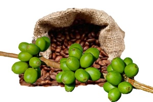 Τι Στην Ευχή Είναι Ο Πράσινος Καφές;