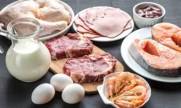 Πρωτεϊνικές δίαιτες