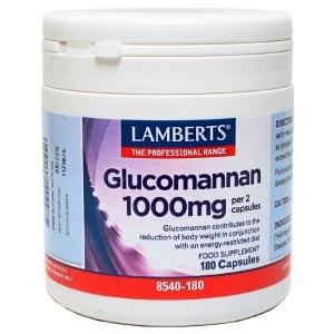 γλυκομαννάνη konjac (glucomannan)