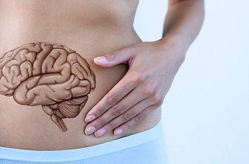 Εγκέφαλος στομάχι πείνα
